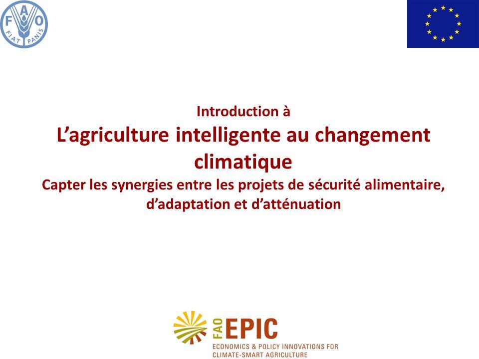 Historique et raison dêtre du projet Améliorer lagriculture : un élément indispensable pour lutter contre linsécurité alimentaire et le changement climatique La croissance de la production agricole est le moyen de lutte le plus efficace contre la pauvreté.