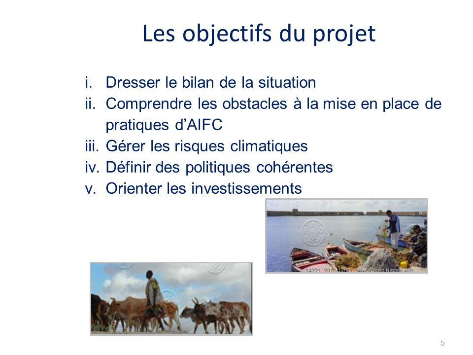 5 i.Dresser le bilan de la situation ii.Comprendre les obstacles à la mise en place de pratiques dAIFC iii.Gérer les risques climatiques iv.Définir des politiques cohérentes v.Orienter les investissements Les objectifs du projet