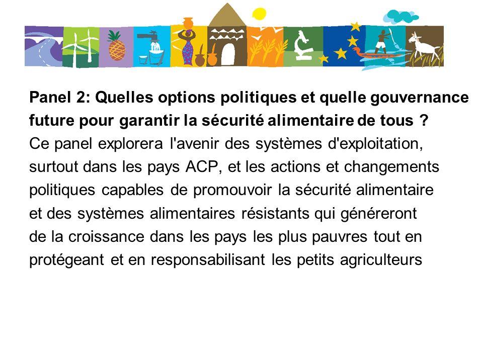 Panel 2: Quelles options politiques et quelle gouvernance future pour garantir la sécurité alimentaire de tous .