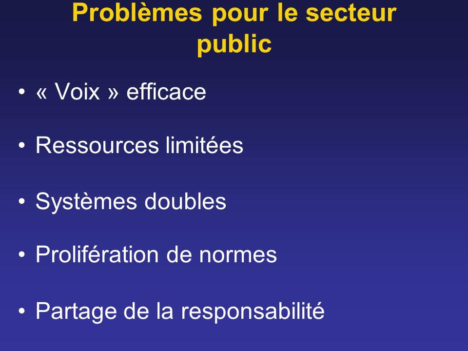 Problèmes pour le secteur public « Voix » efficace Ressources limitées Systèmes doubles Prolifération de normes Partage de la responsabilité