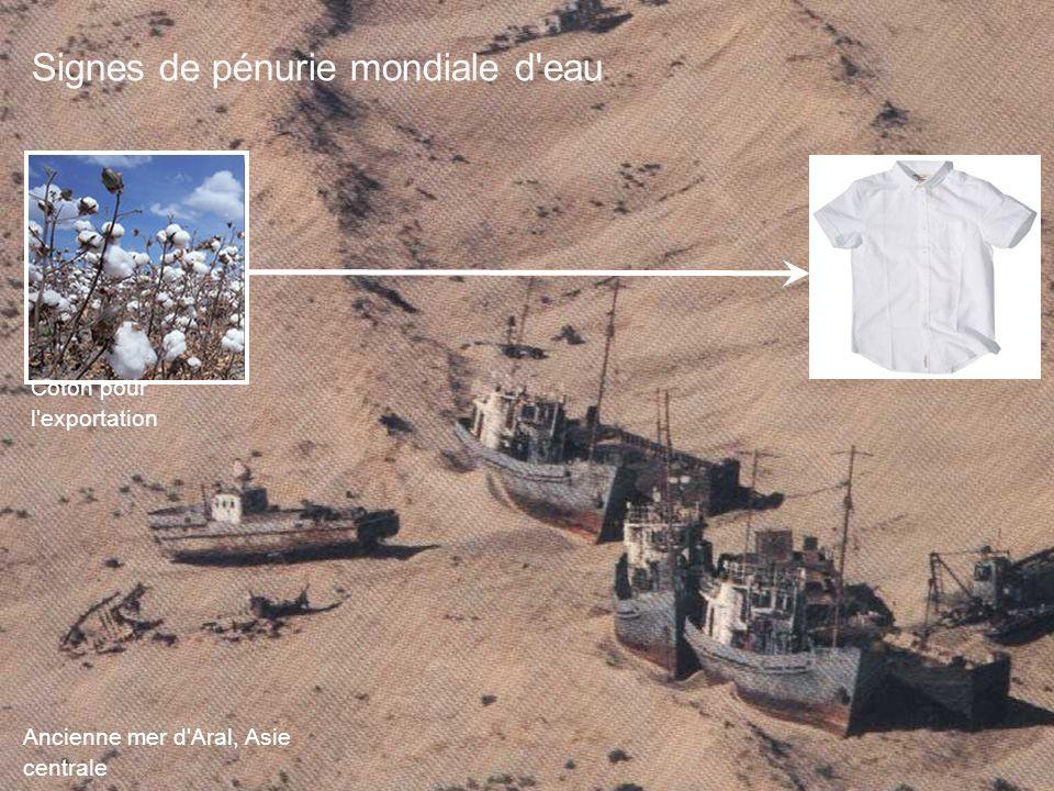 Ancienne mer d'Aral, Asie centrale Coton pour l'exportation Signes de pénurie mondiale d'eau