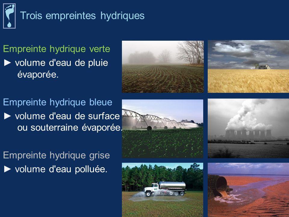 Empreinte hydrique verte volume d'eau de pluie évaporée. Empreinte hydrique bleue volume d'eau de surface ou souterraine évaporée. Empreinte hydrique
