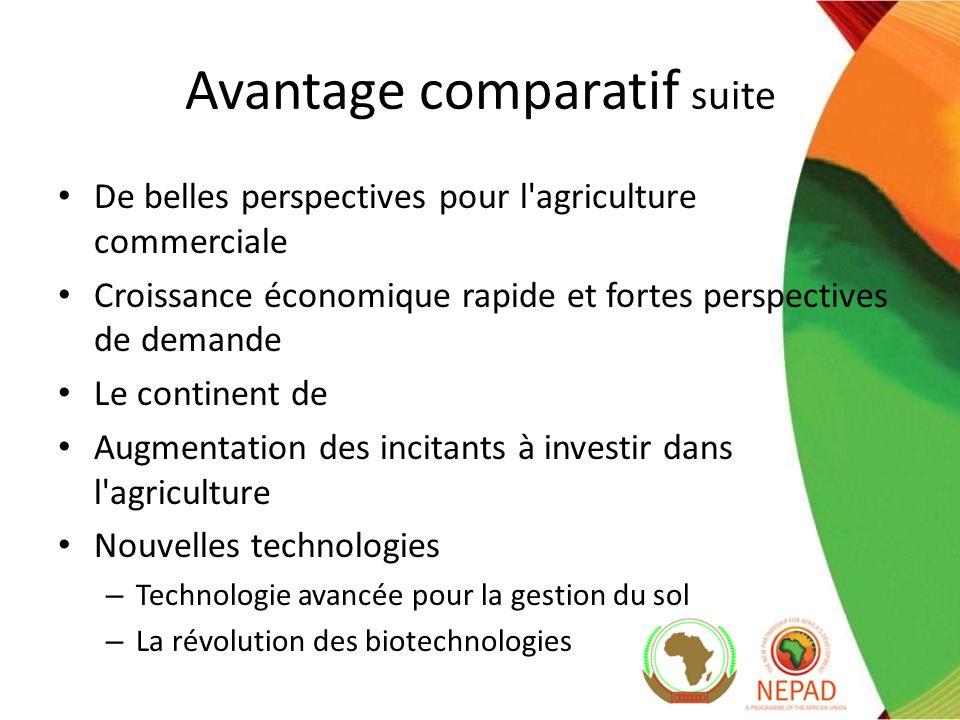 De belles perspectives pour l agriculture commerciale Croissance économique rapide et fortes perspectives de demande Le continent de Augmentation des incitants à investir dans l agriculture Nouvelles technologies – Technologie avancée pour la gestion du sol – La révolution des biotechnologies Avantage comparatif suite