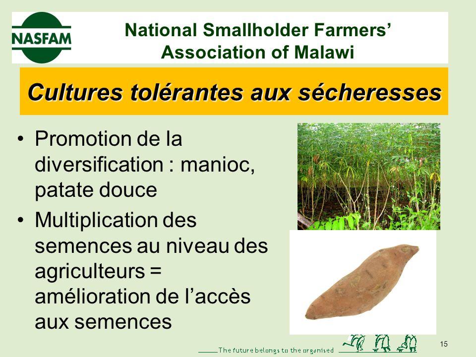 National Smallholder Farmers Association of Malawi Technologies de collecte de leau Barrages Fosses découlement Collecte deau à source déterminée - Co
