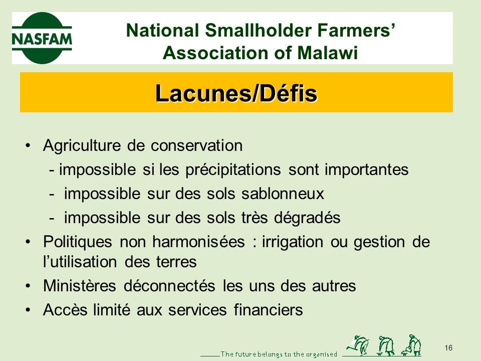 National Smallholder Farmers Association of Malawi Cultures tolérantes aux sécheresses Promotion de la diversification : manioc, patate douce Multiplication des semences au niveau des agriculteurs = amélioration de laccès aux semences 15