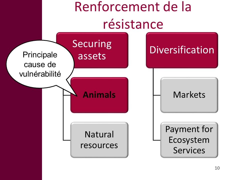 Renforcement de la résistance 10 Securing assets Animals Natural resources Diversification Markets Payment for Ecosystem Services Principale cause de
