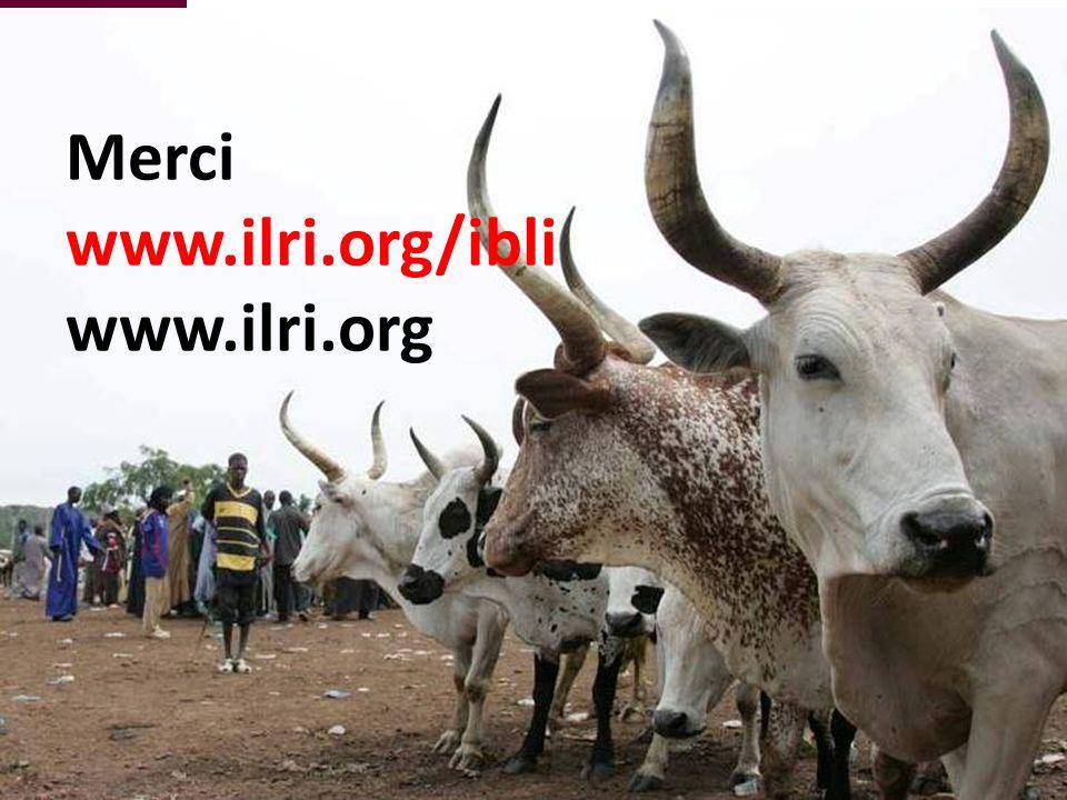 Merci www.ilri.org/ibli www.ilri.org