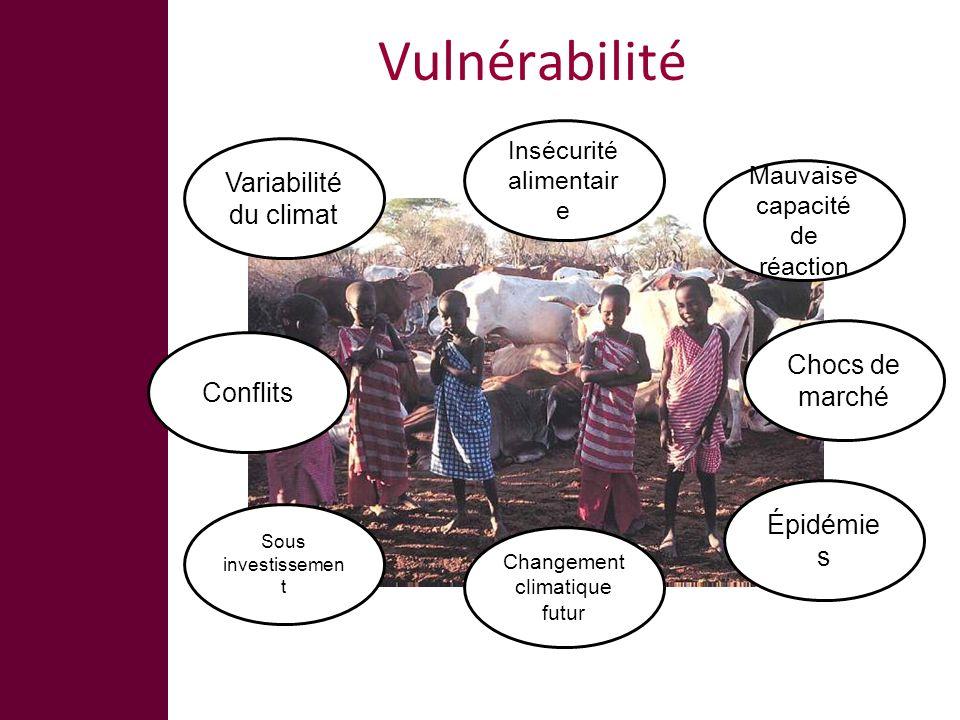 Vulnérabilité Variabilité du climat Changement climatique futur Insécurité alimentair e Conflits Mauvaise capacité de réaction Sous investissemen t Chocs de marché Épidémie s