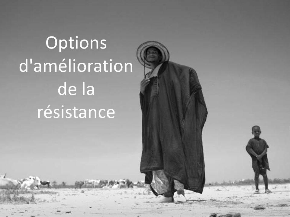 Options d amélioration de la résistance