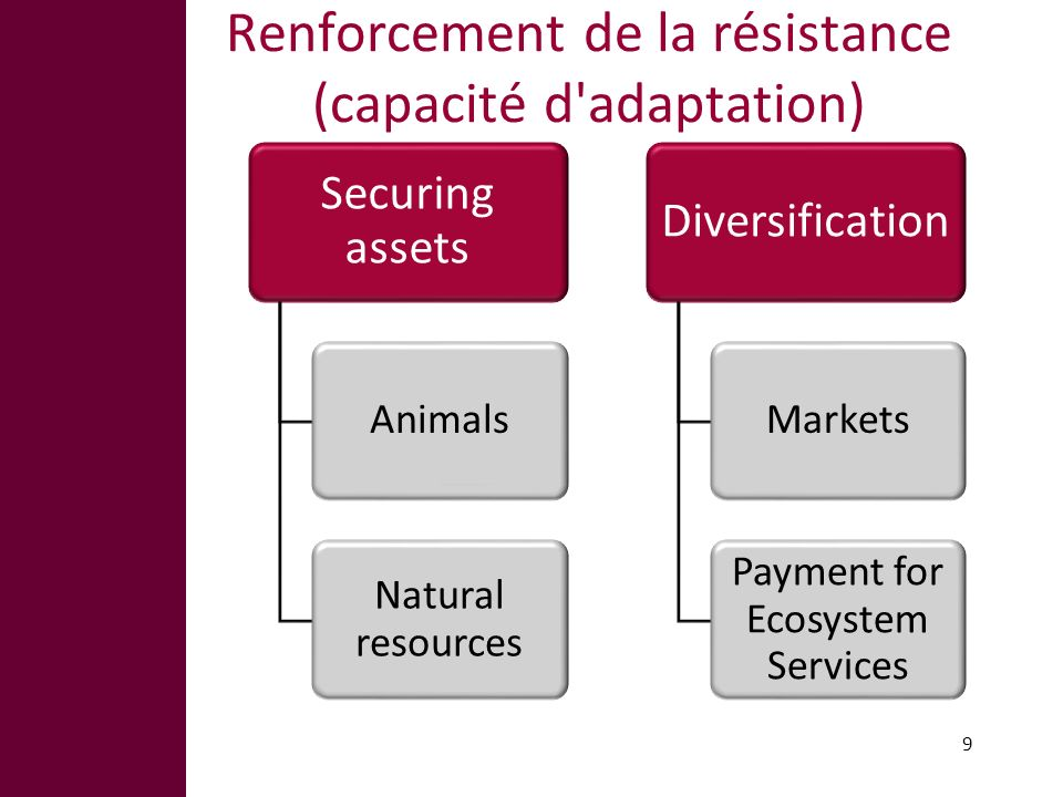 Renforcement de la résistance (capacité d'adaptation) 9 Securing assets Animals Natural resources Diversification Markets Payment for Ecosystem Servic