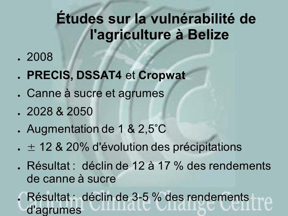 Études sur la vulnérabilité de l agriculture à Belize 2008 PRECIS, DSSAT4 et Cropwat Canne à sucre et agrumes 2028 & 2050 Augmentation de 1 & 2,5°C ± 12 & 20% d évolution des précipitations Résultat : déclin de 12 à 17 % des rendements de canne à sucre Résultat : déclin de 3-5 % des rendements d agrumes