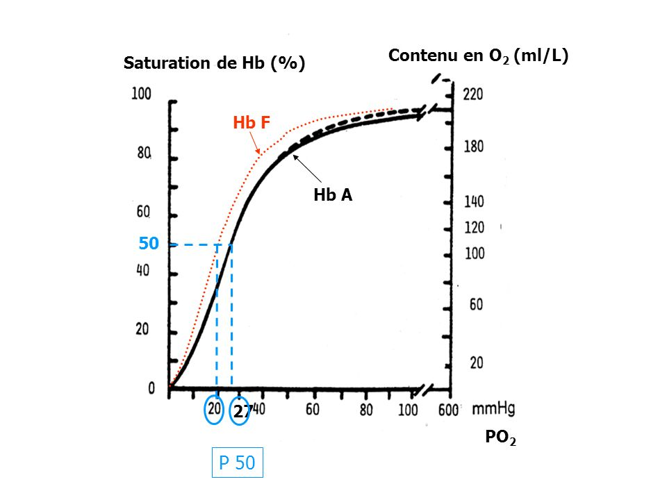 27 P 50 50 Saturation de Hb (%) Contenu en O 2 (ml/L) Hb F Hb A PO 2