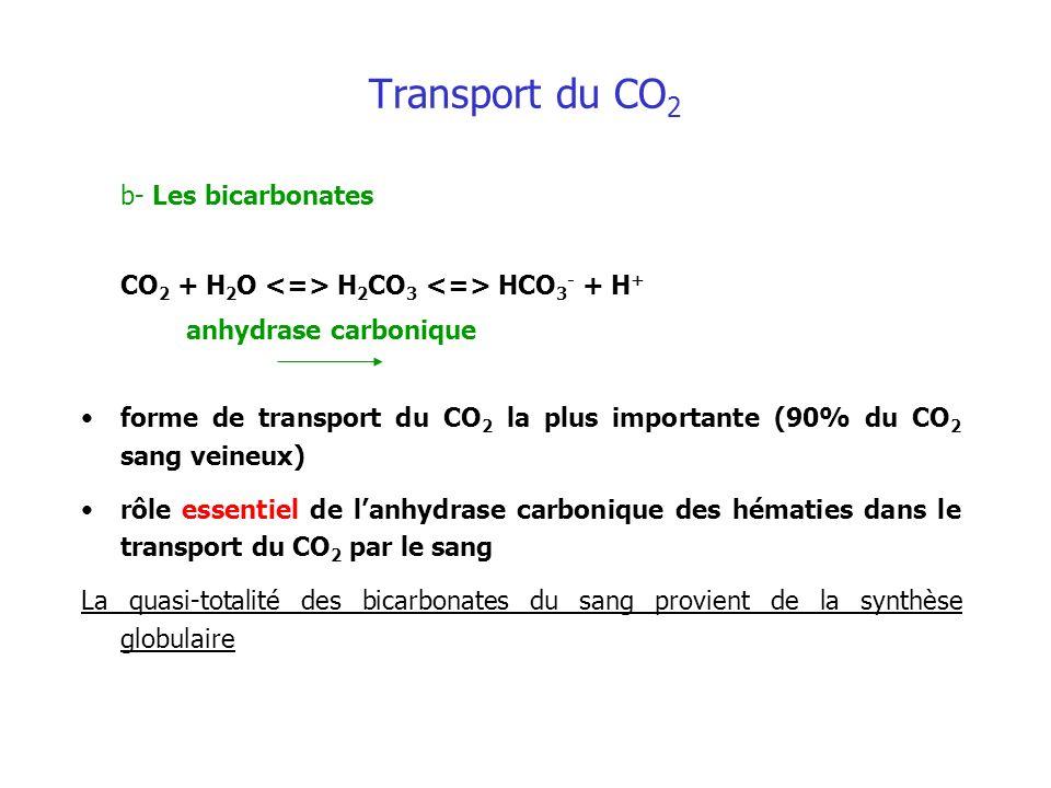 Transport du CO 2 b- Les bicarbonates CO 2 + H 2 O H 2 CO 3 HCO 3 - + H + anhydrase carbonique forme de transport du CO 2 la plus importante (90% du C