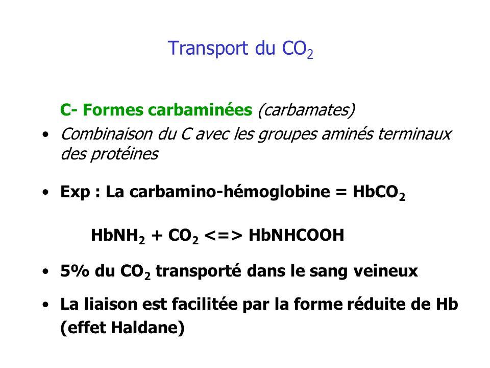 Transport du CO 2 C- Formes carbaminées (carbamates) Combinaison du C avec les groupes aminés terminaux des protéines Exp : La carbamino-hémoglobine =