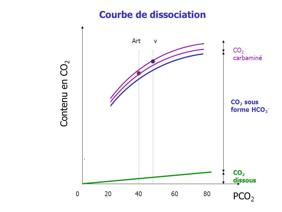 Contenu en CO 2 PCO 2 CO 2 dissous CO 2 sous forme HCO 3 - CO 2 carbaminé 0 20 40 60 80 Art v Courbe de dissociation