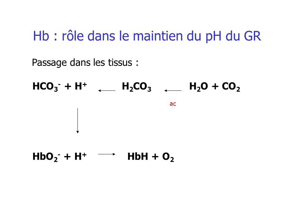 HCO 3 - + H + H 2 CO 3 H 2 O + CO 2 HbO 2 - + H + HbH + O 2 ac Hb : rôle dans le maintien du pH du GR Passage dans les tissus :