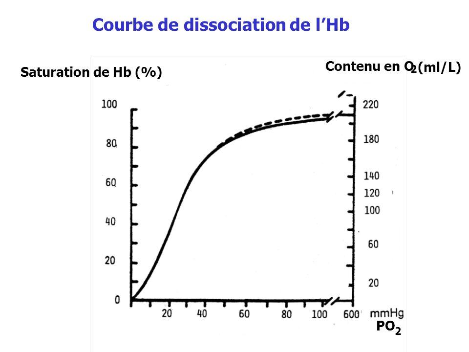 Courbe de dissociation de lHb Saturation de Hb (%) Contenu en O 2 (ml/L) PO 2