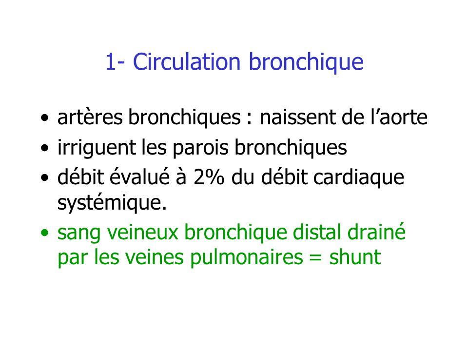 1- Circulation bronchique artères bronchiques : naissent de laorte irriguent les parois bronchiques débit évalué à 2% du débit cardiaque systémique. s