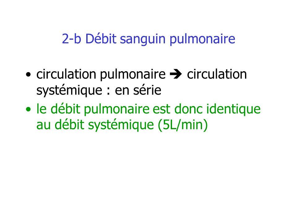 2-b Débit sanguin pulmonaire circulation pulmonaire circulation systémique : en série le débit pulmonaire est donc identique au débit systémique (5L/m