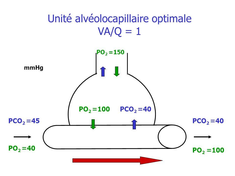 PO 2 =100 mmHg PO 2 =100 PO 2 =40 Unité alvéolocapillaire optimale VA/Q = 1 PO 2 =150 PCO 2 =40 PCO 2 =45