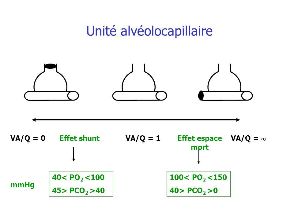 Effet shuntEffet espace mort VA/Q = 1VA/Q = 0VA/Q = 40< PO 2 <100 45> PCO 2 >40 100< PO 2 <150 40> PCO 2 >0 mmHg Unité alvéolocapillaire