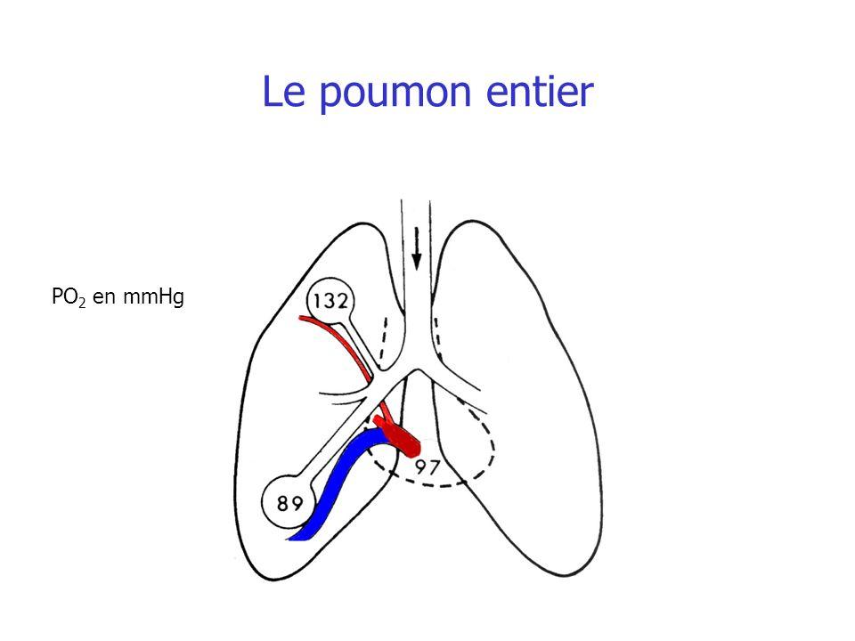 Le poumon entier PO 2 en mmHg