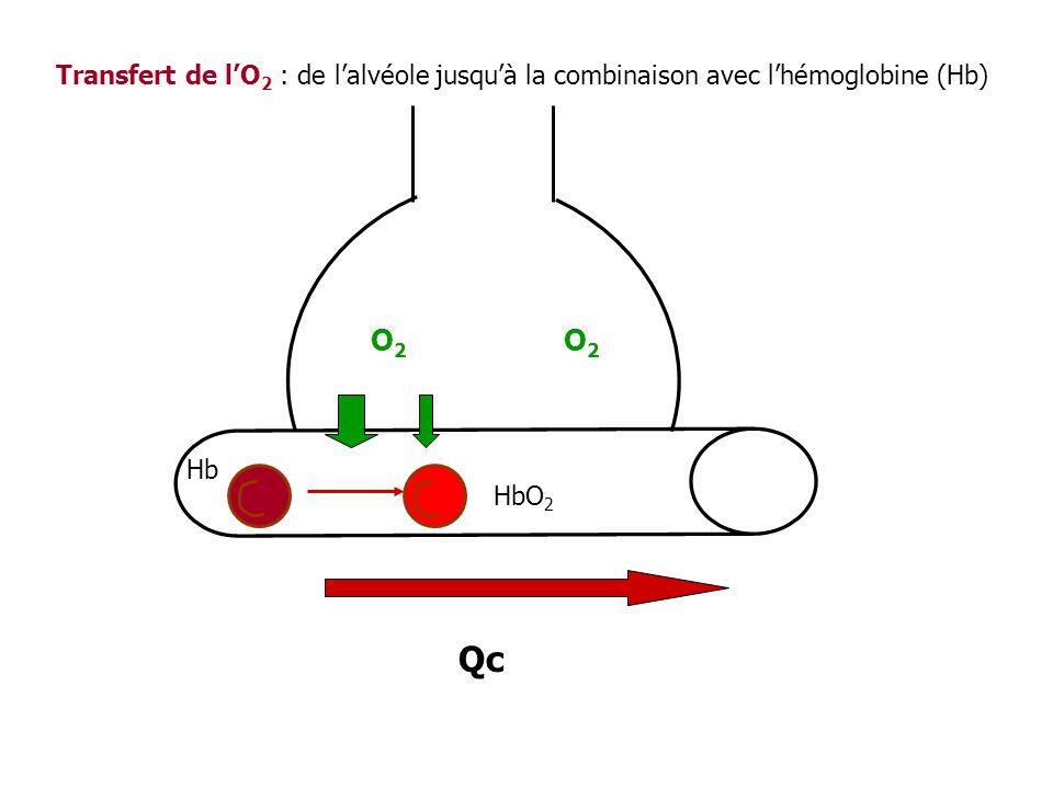 O2O2 HbO 2 O2O2 Hb Qc Transfert de lO 2 : de lalvéole jusquà la combinaison avec lhémoglobine (Hb)