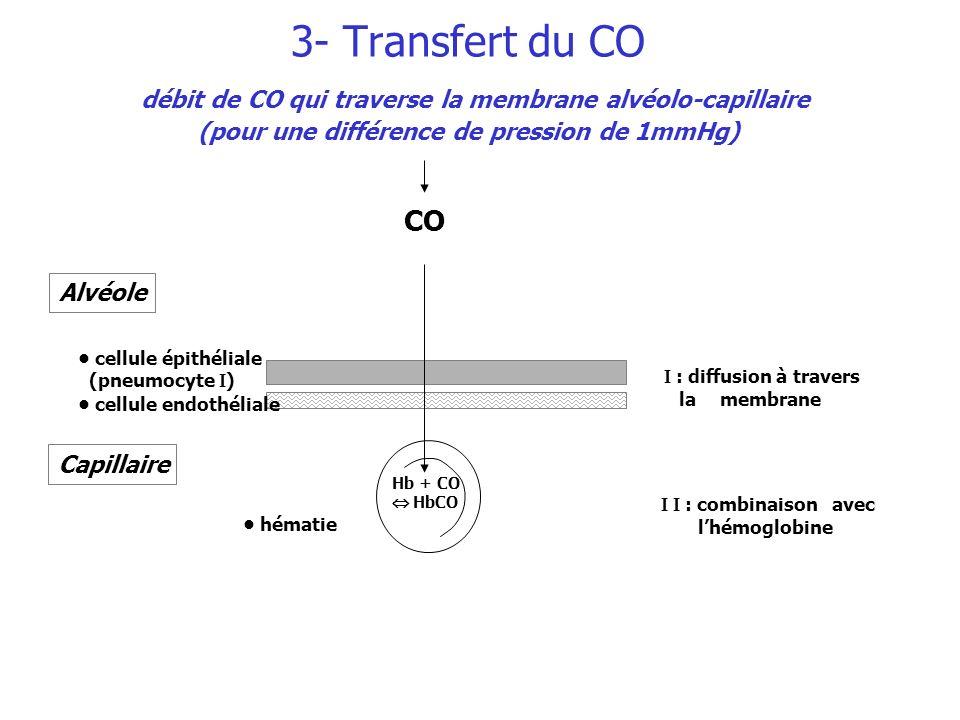 : diffusion à travers la membrane : combinaison avec lhémoglobine CO Capillaire hématie Alvéole cellule épithéliale (pneumocyte ) cellule endothéliale