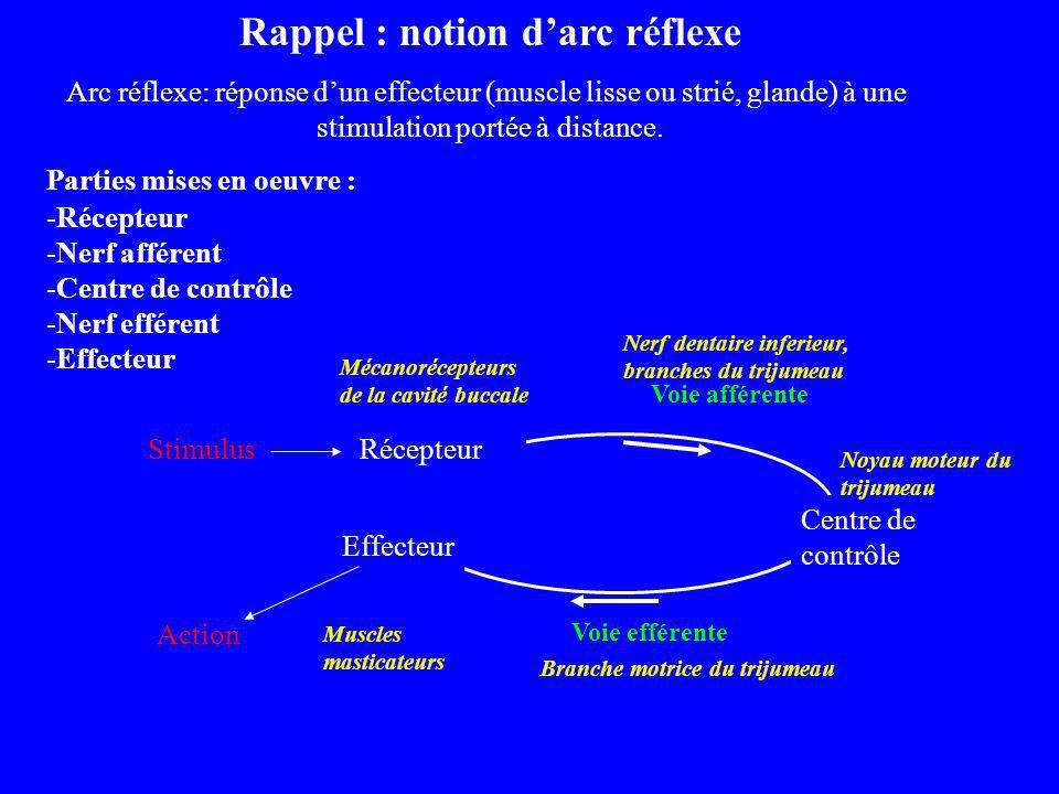 Rappel : notion darc réflexe Arc réflexe: réponse dun effecteur (muscle lisse ou strié, glande) à une stimulation portée à distance. Parties mises en