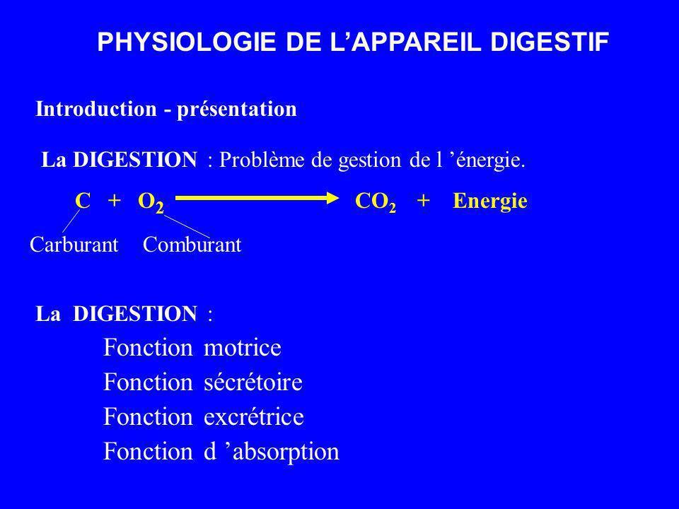 PHYSIOLOGIE DE LAPPAREIL DIGESTIF Introduction - présentation La DIGESTION : Problème de gestion de l énergie. C + O 2 CO 2 + Energie Carburant Combur