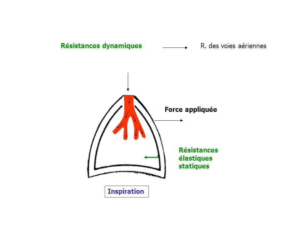 Résistances élastiques statiques Résistances dynamiques Force appliquée Inspiration R. des voies aériennes