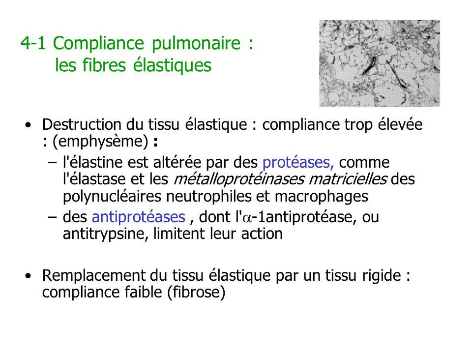 4-1 Compliance pulmonaire : les fibres élastiques Destruction du tissu élastique : compliance trop élevée : (emphysème) : –l'élastine est altérée par