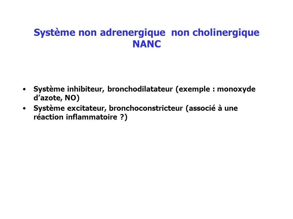 Système non adrenergique non cholinergique NANC Système inhibiteur, bronchodilatateur (exemple : monoxyde dazote, NO) Système excitateur, bronchoconst