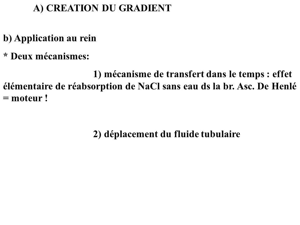 A) CREATION DU GRADIENT b) Application au rein * Deux mécanismes: 1) mécanisme de transfert dans le temps : effet élémentaire de réabsorption de NaCl