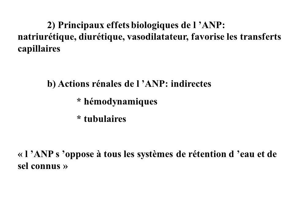 Effets rénaux « indirects » Le système rénine-angiotensine-aldostérone (SRAA) : L ANP inhibe la sécrétion : de rénine par l appareil juxta-glomérulaire d aldostérone par la zone glomérulée de la cortico-surrénale L arginine-vasopressine : L ANP réduit sa synthèse par l hypothalamus et sa libération par la post- hypophyse Le système sympathique : L ANP réduit le tonus sympathique au niveau du système nerveux central et du système nerveux périphérique (relargage des cathécolamines et modulation des barorécepteurs) L endothéline: