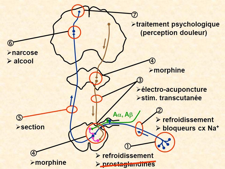 A, A refroidissement prostaglandines refroidissement bloqueurs cx Na + électro-acuponcture stim. transcutanée morphine narcose alcool morphine section