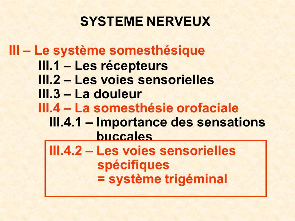 SYSTEME NERVEUX III – Le système somesthésique III.1 – Les récepteurs III.2 – Les voies sensorielles III.3 – La douleur III.4 – La somesthésie orofaci