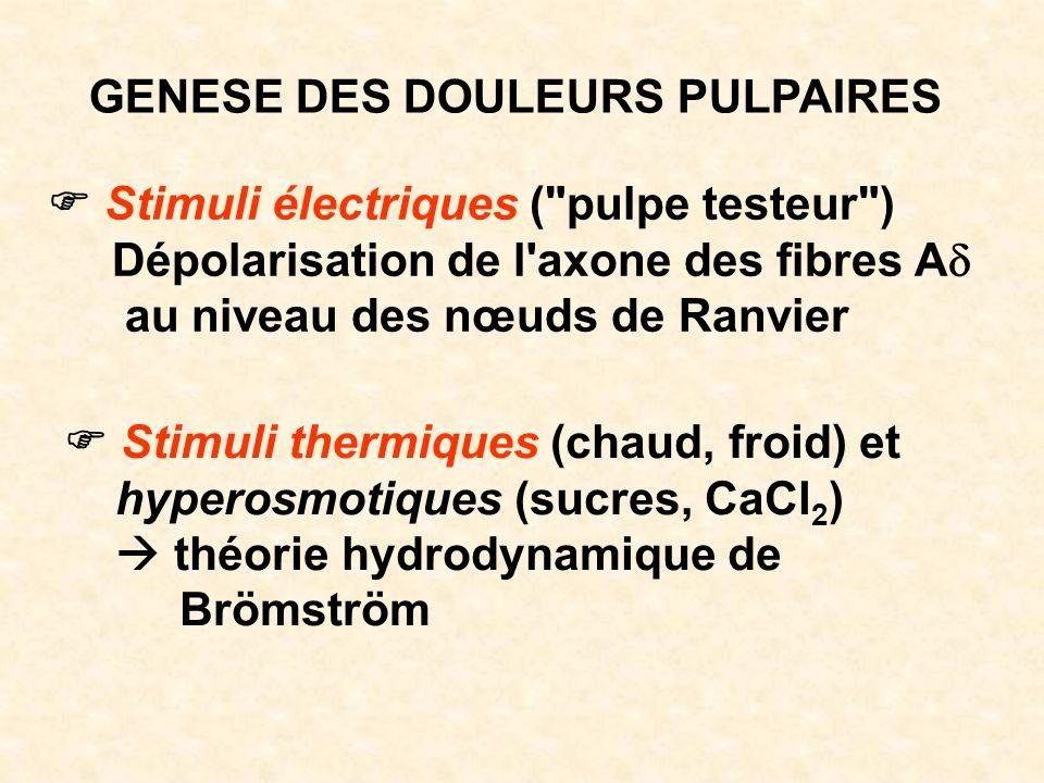 GENESE DES DOULEURS PULPAIRES Stimuli électriques (