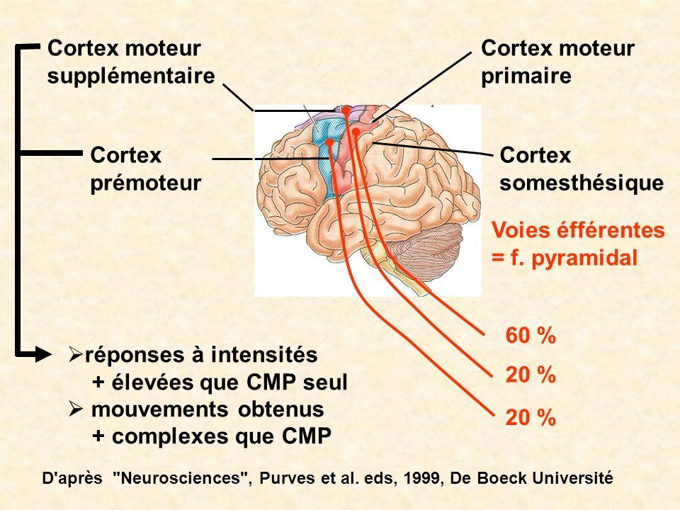 Cortex moteur primaire Cortex moteur supplémentaire Cortex somesthésique Cortex prémoteur réponses à intensités + élevées que CMP seul mouvements obte