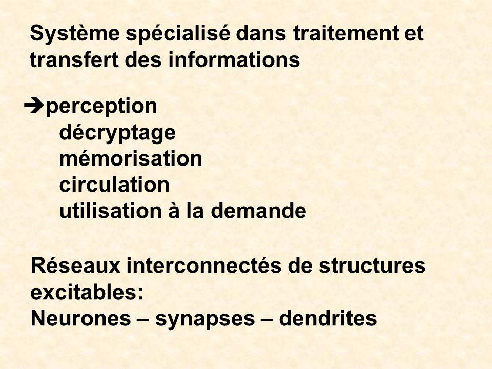 Système spécialisé dans traitement et transfert des informations perception décryptage mémorisation circulation utilisation à la demande Réseaux inter