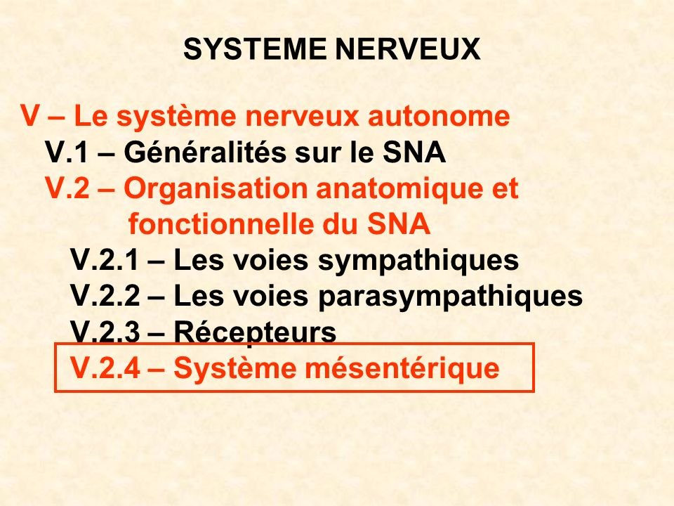 SYSTEME NERVEUX V – Le système nerveux autonome V.1 – Généralités sur le SNA V.2 – Organisation anatomique et fonctionnelle du SNA V.2.1 – Les voies s