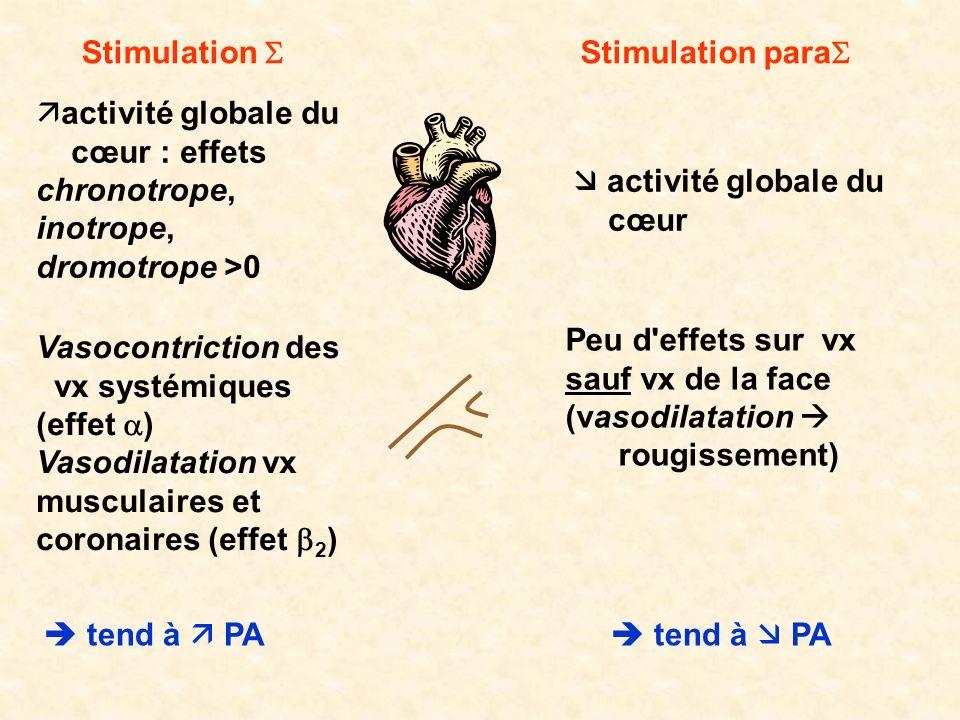 Stimulation Stimulation para activité globale du cœur : effets chronotrope, inotrope, dromotrope >0 Vasocontriction des vx systémiques (effet ) Vasodi