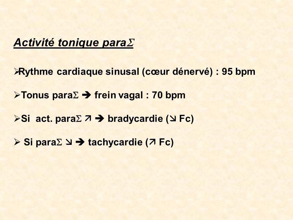 Rythme cardiaque sinusal (cœur dénervé) : 95 bpm Tonus para frein vagal : 70 bpm Si act. para bradycardie ( Fc) Si para tachycardie ( Fc) Activité ton