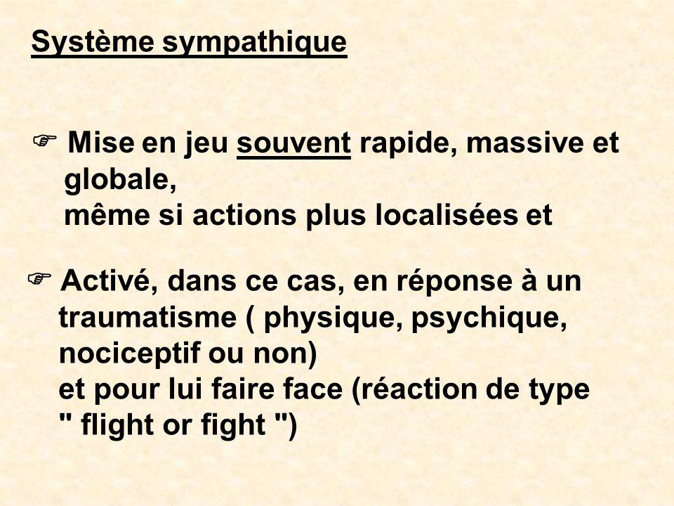 Système sympathique Mise en jeu souvent rapide, massive et globale, même si actions plus localisées et Activé, dans ce cas, en réponse à un traumatism