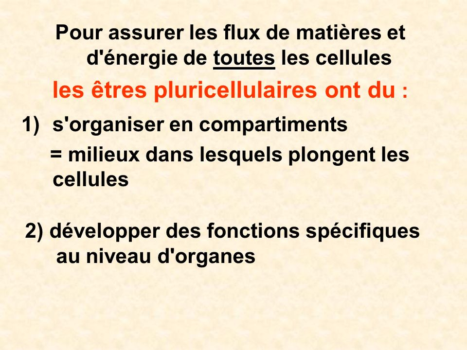 SYSTEME NERVEUX III – Le système somesthésique III.1 – Les récepteurs III.2 – Les voies sensorielles III.2.1 – Le système des colonnes distales = s.