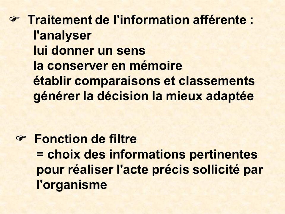 Traitement de l'information afférente : l'analyser lui donner un sens la conserver en mémoire établir comparaisons et classements générer la décision