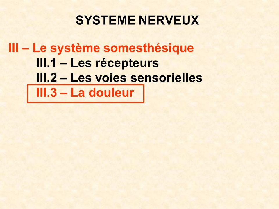 SYSTEME NERVEUX III – Le système somesthésique III.1 – Les récepteurs III.2 – Les voies sensorielles III.3 – La douleur