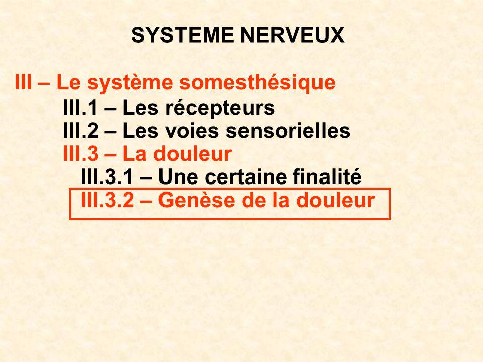 SYSTEME NERVEUX III – Le système somesthésique III.1 – Les récepteurs III.2 – Les voies sensorielles III.3 – La douleur III.3.1 – Une certaine finalit