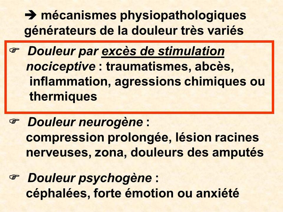 mécanismes physiopathologiques générateurs de la douleur très variés Douleur par excès de stimulation nociceptive : traumatismes, abcès, inflammation,