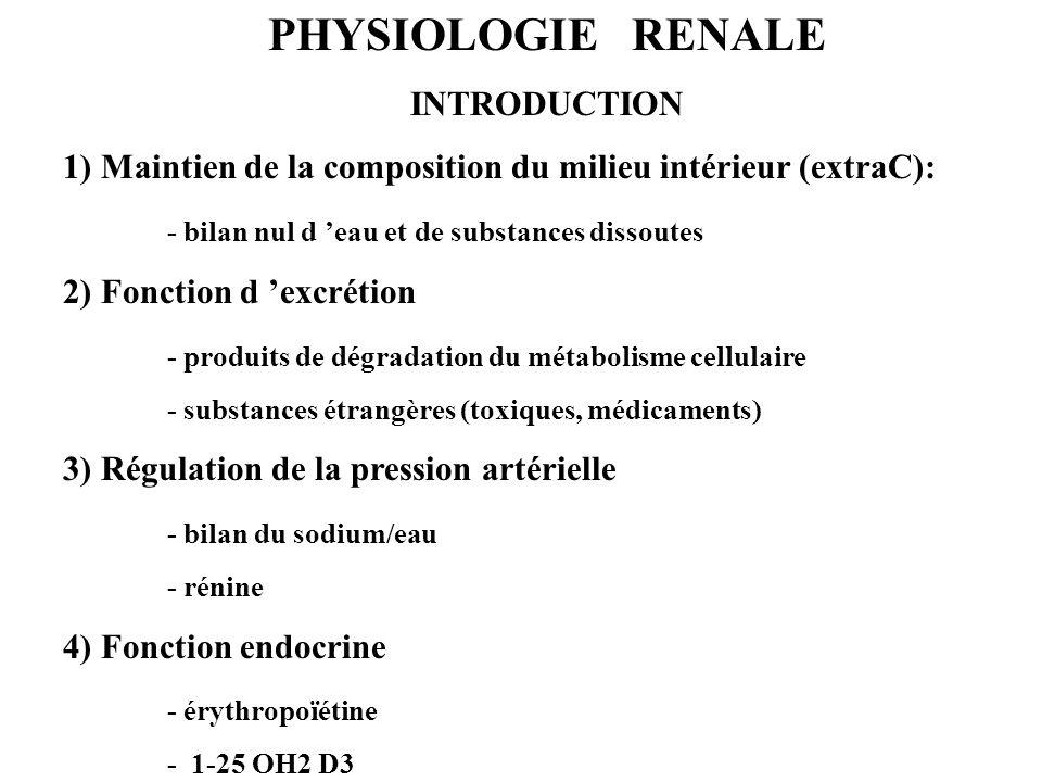 PHYSIOLOGIE RENALE INTRODUCTION 1) Maintien de la composition du milieu intérieur (extraC): - bilan nul d eau et de substances dissoutes 2) Fonction d excrétion - produits de dégradation du métabolisme cellulaire - substances étrangères (toxiques, médicaments) 3) Régulation de la pression artérielle - bilan du sodium/eau - rénine 4) Fonction endocrine - érythropoïétine - 1-25 OH2 D3